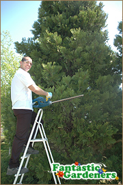 Equipped gardening experts