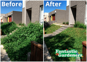 Lawn mowing Melbourne before after
