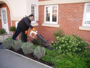 Gardening service in Wantirna